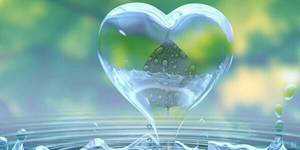 clarividência do amor