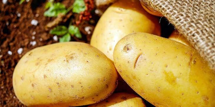 sonhar com batatas