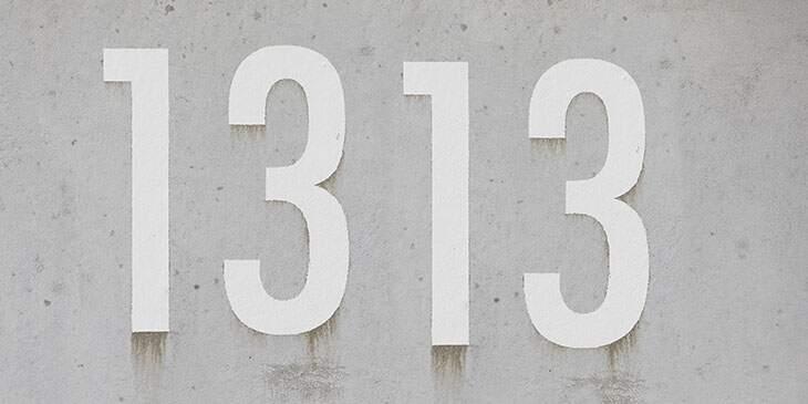 significado 1313
