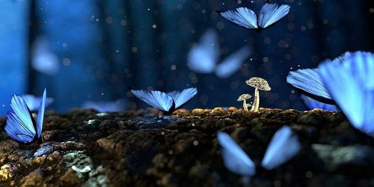 significado espiritual de borboleta azul