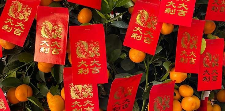 animal do ano novo chinês de 2021