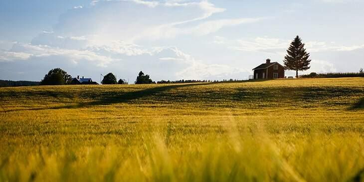 sonhar com fazenda